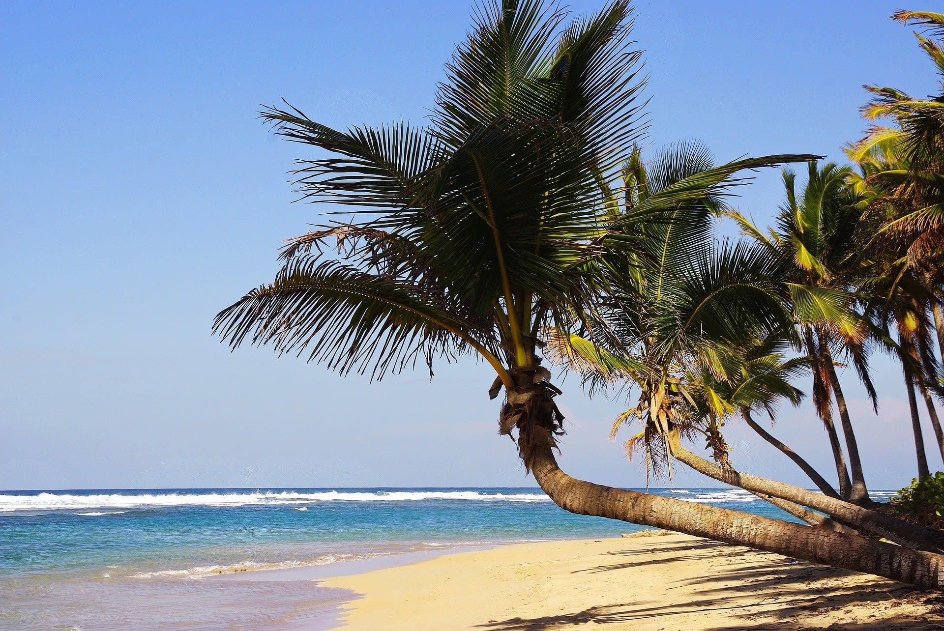 Repubblica Dominicana Punta Cana